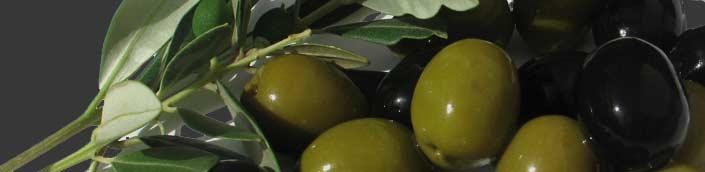 Olio Extra vergine di olive Lago di Garda Valtenesi